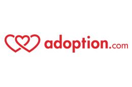 Adoption - iprogrammer.com